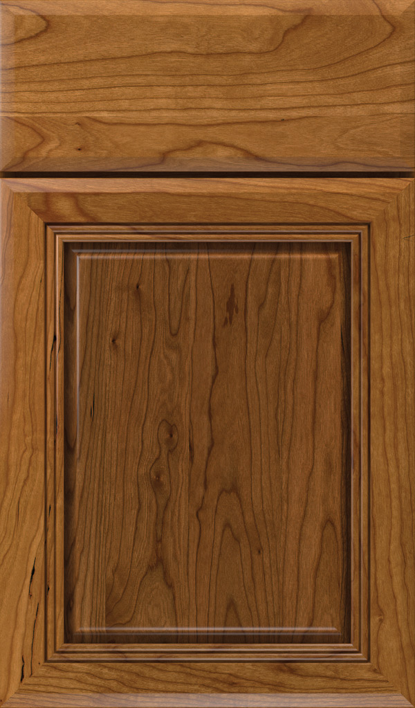 cambridge_cherry_raised_panel_cabinet_door_suede