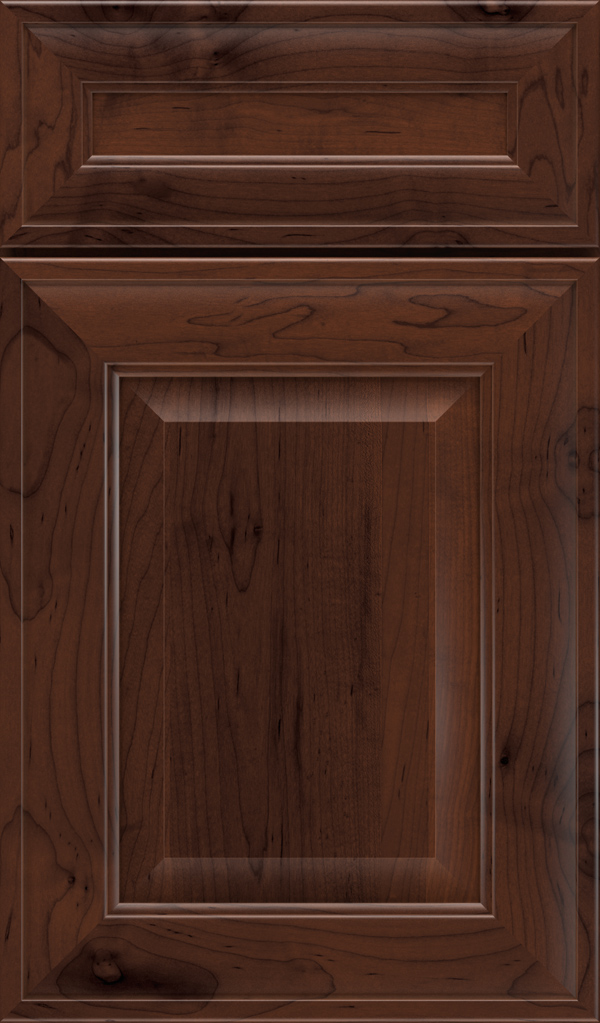 davenport_5pc_maple_raised_panel_cabinet_door_malbec