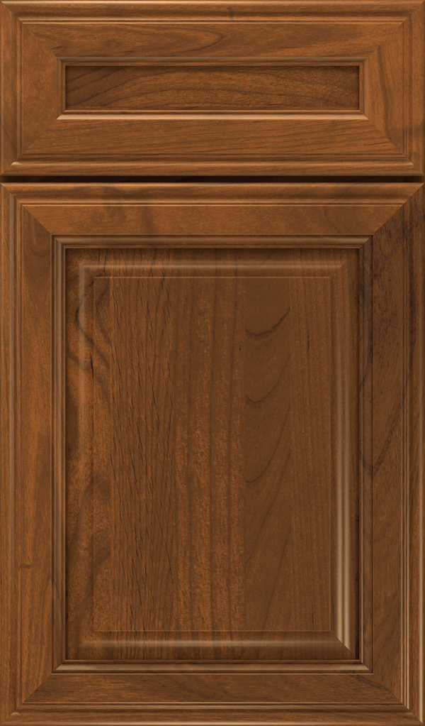 galleria_5pc_alder_raised_panel_cabinet_door_suede