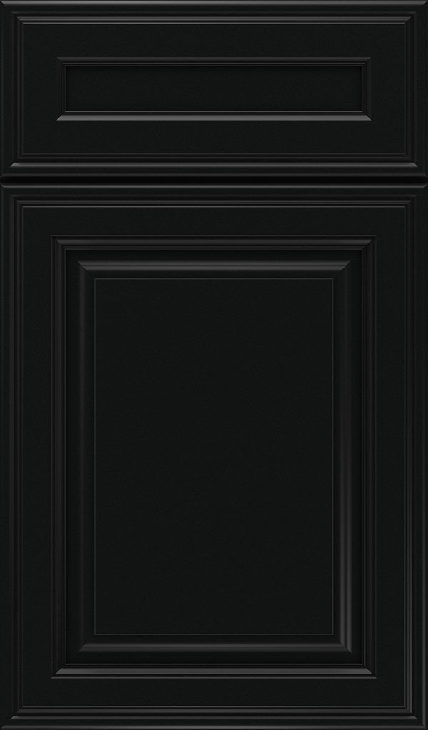 Galleria 5-Piece Maple Raised Panel Cabinet Door in Jet