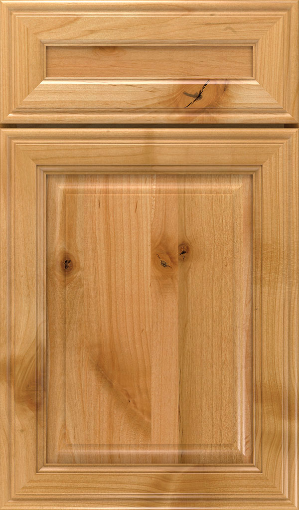 Galleria 5-Piece Rustic Alder Raised Panel Cabinet Door in Natural