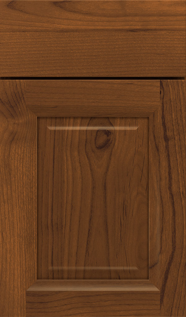 Hawthorne Alder Raised Panel Cabinet Door in Suede