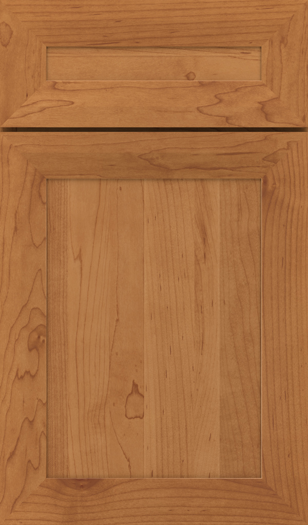 modesto_5pc_maple_recessed_panel_cabinet_door_suede