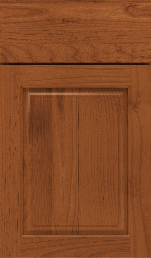 plaza_alder_raised_panel_cabinet_door_brandywine