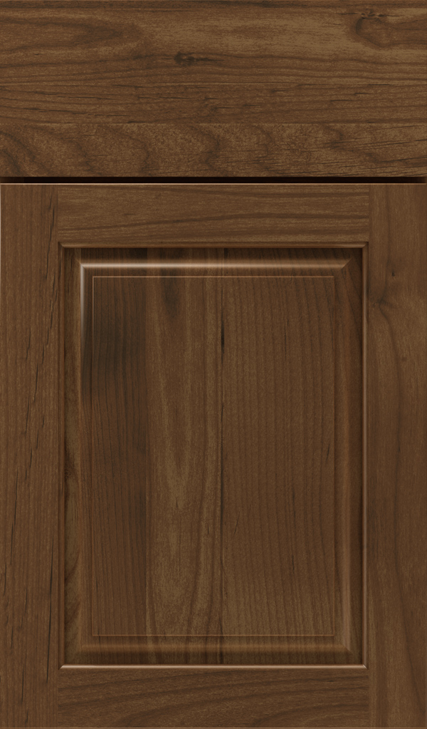 plaza_alder_raised_panel_cabinet_door_mink