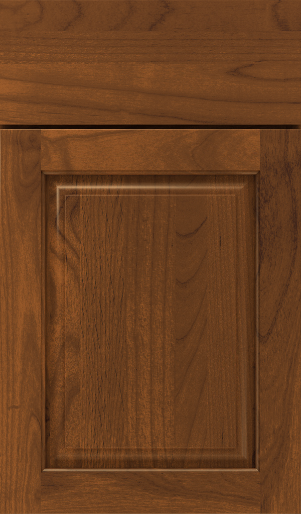 plaza_alder_raised_panel_cabinet_door_suede