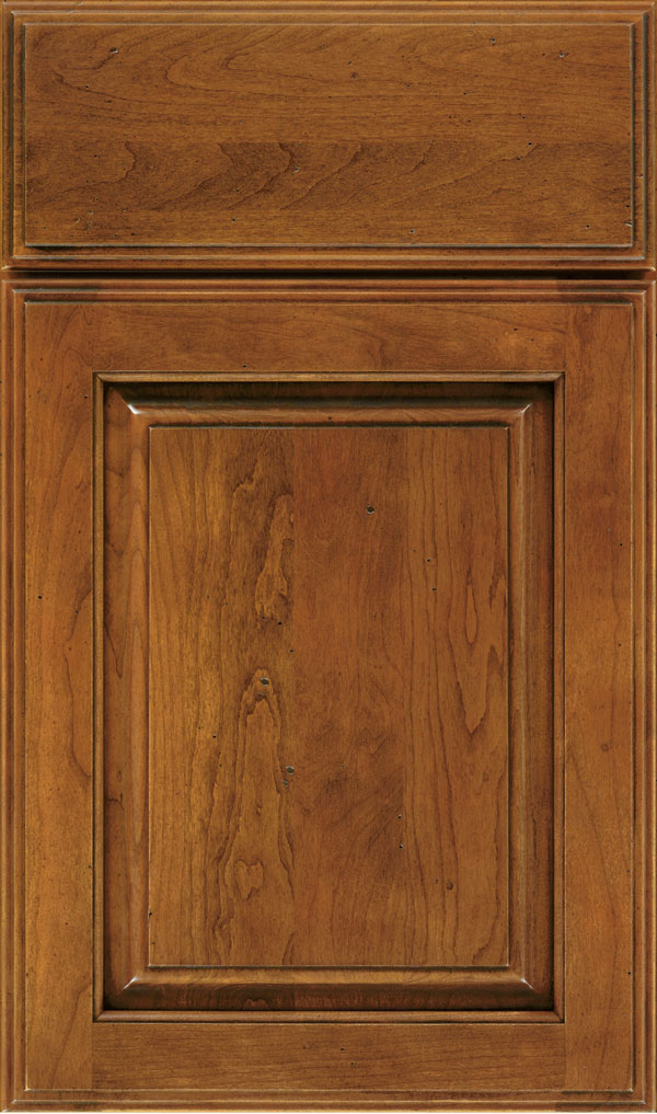 Plaza Cherry Raised Panel Cabinet Door in Bourbon Noir