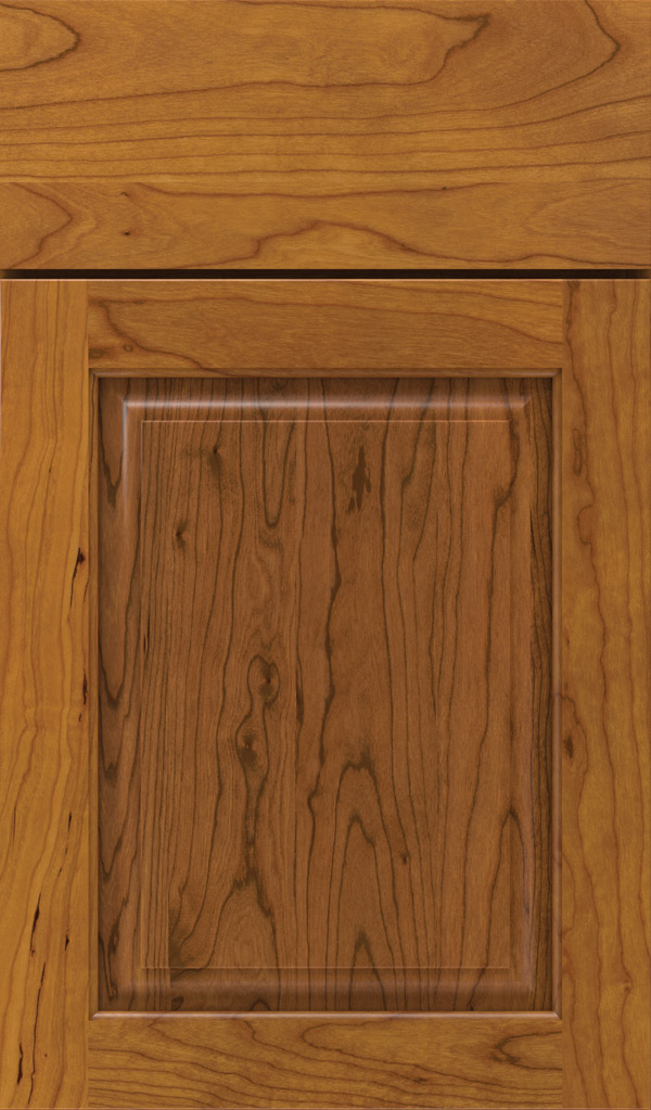 plaza_cherry_raised_panel_cabinet_door_pheasant