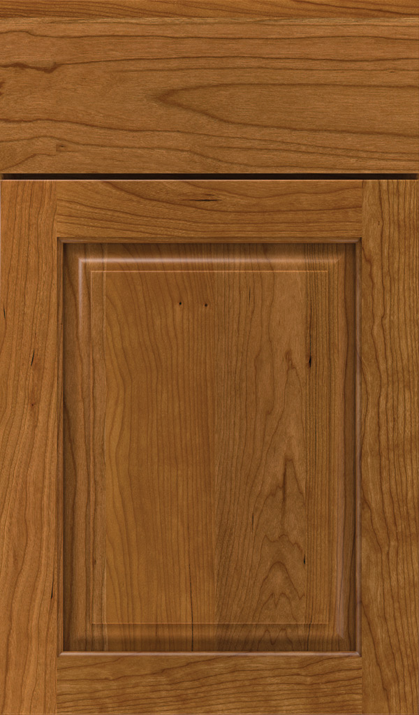 plaza_cherry_raised_panel_cabinet_door_suede