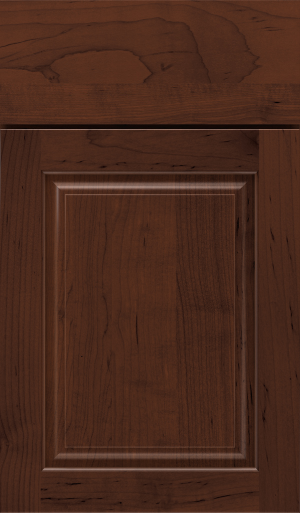 plaza_maple_raised_panel_cabinet_door_malbec