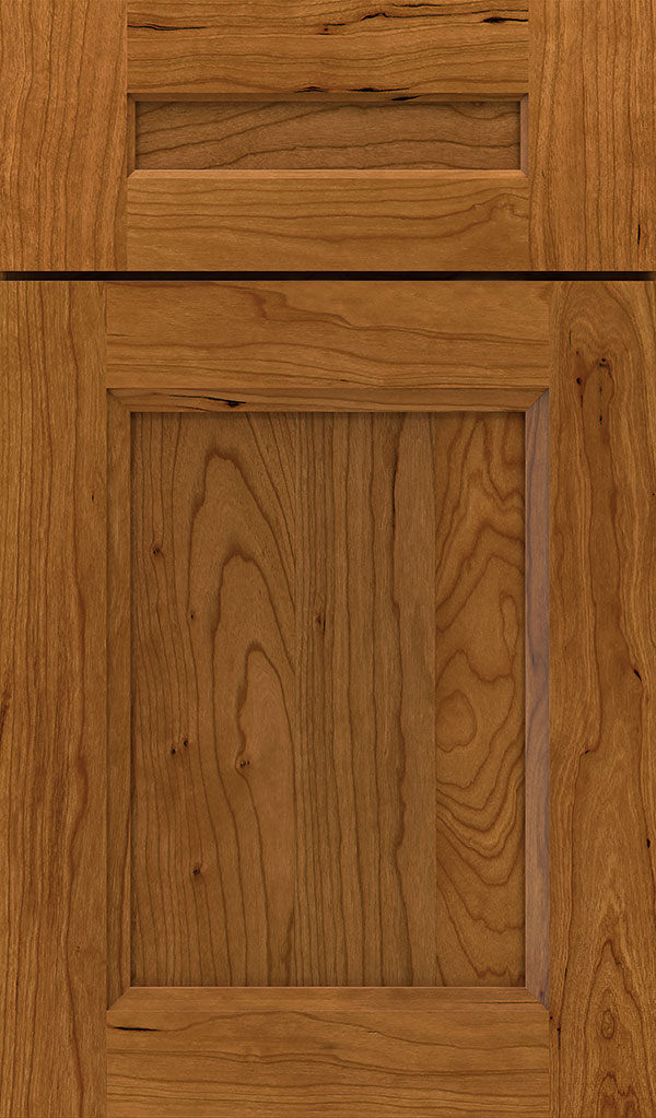 tobi_5pc_cherry_recessed_panel_cabinet_door_suede